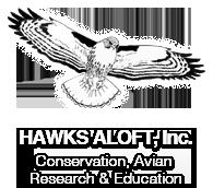 Logo: Hawks Aloft Inc.